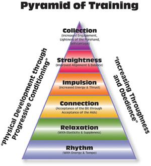 Pyramid_of_training-sm